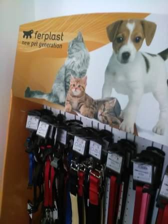 Collari e giochi per cani