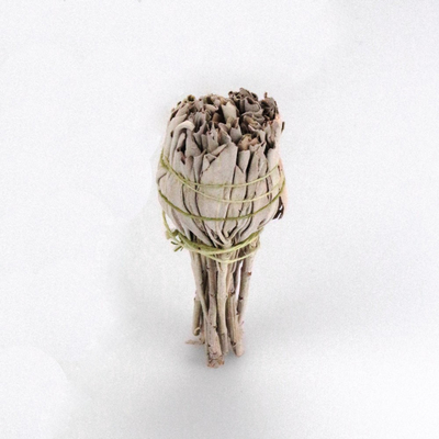 Incenso di Salvia Bianca Smudge 1 pz cm 12x3 (Salvia Apiana)