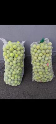 830 palline da tennis usate